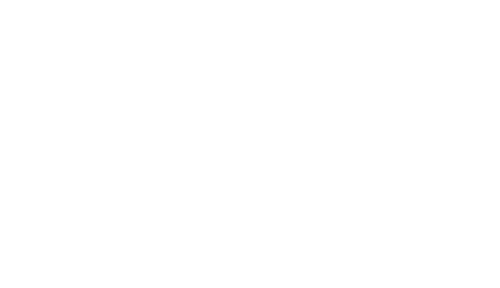 Birdeye Reviews